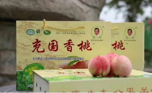 南充市西充桃子什么时候熟?充国香桃近几年的销售情况