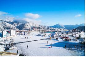 西岭雪山游玩指南:景点、游玩项目、游玩时间、交通方式等。