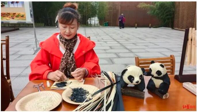 2020竹博会、首届数字国际熊猫节将于下月初在四川青神举行